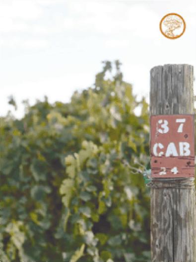 Wines 46